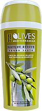Düfte, Parfümerie und Kosmetik Regenerierendes Shampoo mit Olivenöl für trockenes und behandeltes Haar - Nature of Agiva Olives Hair Shampoo