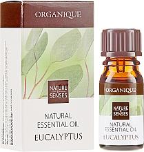Düfte, Parfümerie und Kosmetik Äthersches Eukalyptusöl - Organique Natural Essential Oil Eucalyptus