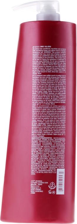 Farbpflegender Conditioner für blondes und graues Haar gegen Gelbstich - Joico Color Endure Violet Conditioner — Bild N2