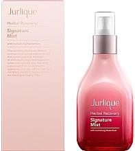 Düfte, Parfümerie und Kosmetik Regenerierender und feuchtigkeitsspendender Gesichtsnebel - Jurlique Herbal Recovery Signature Mist