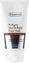 Düfte, Parfümerie und Kosmetik Gesichtsreinigungsmaske mit Schlamm und Algen - Bielenda Professional Purifying Mud and Algae Face Mask