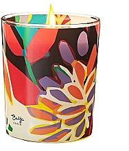 Düfte, Parfümerie und Kosmetik Duftkerze Bergamotte - Baija Vertige Solaire Scented Candle