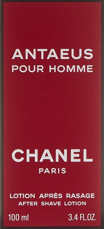 Chanel Antaeus - After Shave Lotion — Bild N3