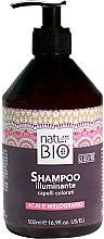 Düfte, Parfümerie und Kosmetik Shampoo mit Acai und Granatapfel für gefärbtes Haar - Renee Blanche Natur Green Bio Illuminante Shampoo