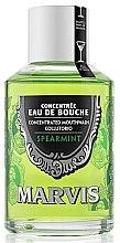 Düfte, Parfümerie und Kosmetik Mundspülung Pfefferminz - Marvis Concentrate Spreamint Mouthwash