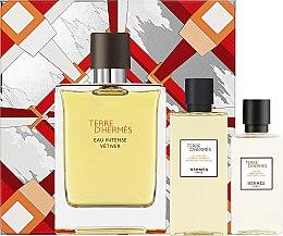 Düfte, Parfümerie und Kosmetik Hermes Terre d'Hermes Eau Intense Vetiver Set - Duftset (Eau de Parfum 100ml + After Shave Lotion 40ml + Duschgel 80ml)