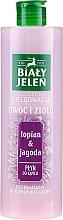 Düfte, Parfümerie und Kosmetik Badeschaum mit Klette und Heidelbeere - Bialy Jelen Fruit and Herb