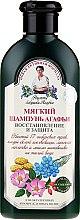 Düfte, Parfümerie und Kosmetik Regenerierendes und schützendes Shampoo mit 17 sibirischen Kräutern - Rezepte der Oma Agafja