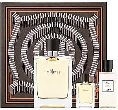 Düfte, Parfümerie und Kosmetik Hermes Terre D'Hermes - Duftset (Eau de Toilette 100 ml + After Shave Lotion 40 ml + Eau de Toilette Mini 5ml)