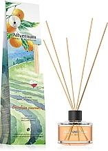 """Düfte, Parfümerie und Kosmetik Raumdiffusor mit Duftholzstäbchen """"Brasilianische Orange"""" - Allvernum Home&Essences Diffuser"""