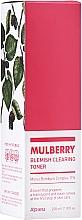 Düfte, Parfümerie und Kosmetik Reinigendes Gesichtstonikum mit Maulbeerenkomplex und Tranexamsäure - A'Pieu Mulberry Blemish Clearing