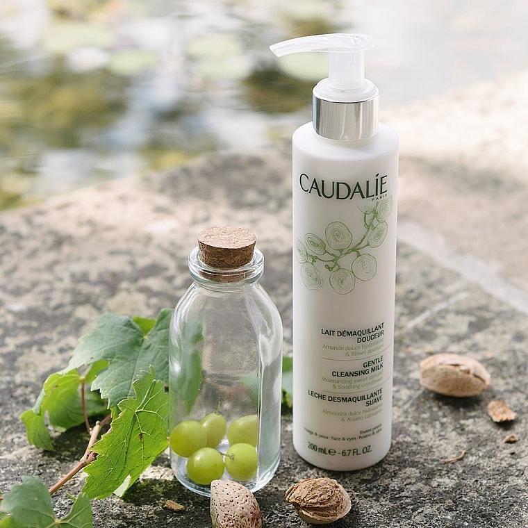Caudalie Cleansing & Toning Gentle Cleanser - Sanfte Make-up Gesichtsreinigungsmilch mit Kornblume und süßem Mandel — Bild N4