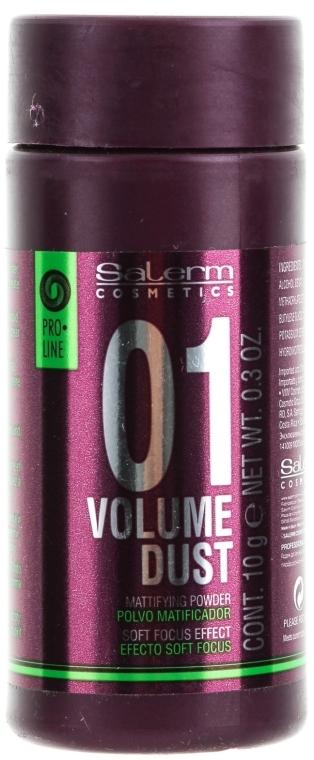 Mattierungspuder für mehr Volumen - Salerm Pro Line Volume Dust 01 Mattifying Powder