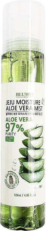 Gesichts, Körper- und Haarnebel mit Aloe Vera - Blumei Jeju Moisture Aloe Vera Mist