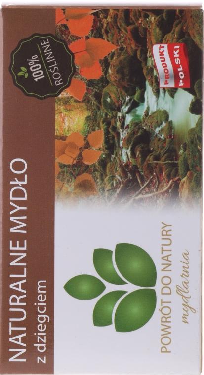 Naturseife mit Teer - Powrot do Natury Natural Soap Tar