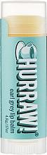 Düfte, Parfümerie und Kosmetik Lippenbalsam Earl Grey - Hurraw! Earl Grey Lip Balm
