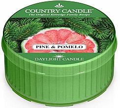 Düfte, Parfümerie und Kosmetik Duftkerze Pine & Pomelo - Country Candle Pine&Pomelo Daylight