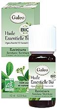 Düfte, Parfümerie und Kosmetik Organisches ätherisches Öl Kampferbaum - Galeo Organic Essential Oil Ravintsara