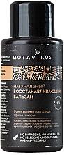 Düfte, Parfümerie und Kosmetik Natürliche regenerierende Haarspülung - Botavikos Repairing Natural Hair Balm (Mini)