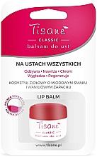Düfte, Parfümerie und Kosmetik Feuchtigkeitsspendender Lippenbalsam mit Honiggeschmack und Vanillearoma - Farmapol Tisane Classic Lip Balm