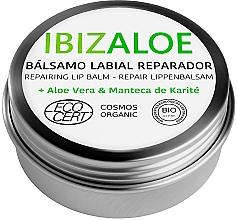 Düfte, Parfümerie und Kosmetik Reparierender Lippenbalsam mit Aloe Vera und Sheabutter - Ibizaloe Repairing Lip Balm
