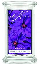 Düfte, Parfümerie und Kosmetik Duftkerze im Glas Sugar Plum Poinsettia - Kringle Candle Sugar Plum Poinsettia