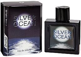 Düfte, Parfümerie und Kosmetik Omerta Silver Ocean - Eau de Toilette