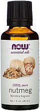 Düfte, Parfümerie und Kosmetik Ätherisches Öl Muskatnuss - Now Foods Essential Oils 100% Pure Nutmeg