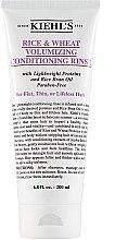 Düfte, Parfümerie und Kosmetik Haarspülung mit Reis- und Weizenproteinen für gesundes Haar - Kiehl's Rice & Wheat Volumizing Conditioning Rinse