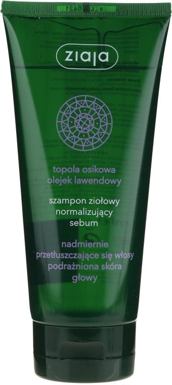 Kräutershampoo zur Normalisierung der Talgproduktion - Ziaja Shampoo
