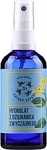 Düfte, Parfümerie und Kosmetik Feuchtigkeitsspendendes Hydrolat für Gesicht, Körper und Haar mit Johanniskraut - Cztery Szpaki