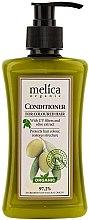 Düfte, Parfümerie und Kosmetik Haarspülung für coloriertes Haar - Melica Organic for Coloured Hair Conditioner