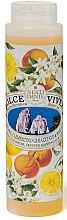 Düfte, Parfümerie und Kosmetik Duschgel Capri mit Basilikum, Mandarinensaft und Orangenblüten - Nesti Dante Dolce Vivere Shower Gel
