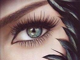 Augenbrauen- und Wimpernfarbe - Schwarzkopf Professional Igora Bonacrom — Bild N6