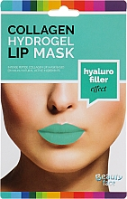 Düfte, Parfümerie und Kosmetik Hydrogel-Lippenmaske mit Kollagen - Beauty Face Collagen Hydrogel Lip Mask Hyaluro Filler