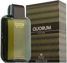 Düfte, Parfümerie und Kosmetik Antonio Puig Quorum - After Shave Lotion