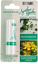 Düfte, Parfümerie und Kosmetik Pflegender Lippenbalsam mit Kamille und Johanniskraut für trockene und entzündete Lippen - Luxvisage