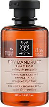 Düfte, Parfümerie und Kosmetik Anti-Schuppen Shampoo mit Sellerie und Propolis - Apivita Shampoo For Dry Dandruff With Celery Propolis