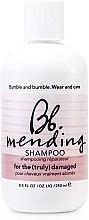 Düfte, Parfümerie und Kosmetik Regenerierendes Shampoo für stapaziertes Haar - Bumble and Bumble Mending Shampoo