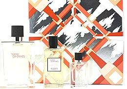 Düfte, Parfümerie und Kosmetik Hermes Terre d'Hermes - Duftset (Eau de Toilette 100ml + Duschgel 80ml + Eau de Toilette 12.5ml)