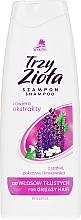 Düfte, Parfümerie und Kosmetik Shampoo für fettiges Haar - Pollena Savona