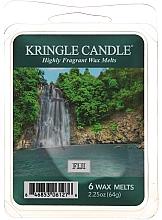 Düfte, Parfümerie und Kosmetik Tart-Duftwachs Fiji - Country Candle Fiji Wax Melts