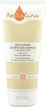 Düfte, Parfümerie und Kosmetik Haarspülung mit Haferextrakt - NeBiolina Organic Oat Hair Conditioner