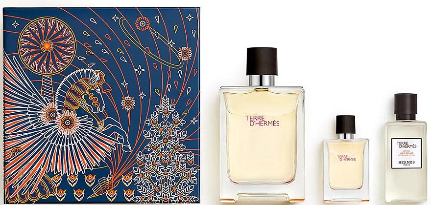 Hermes Terre d'Hermes - Duftset (Eau de Toilette 100ml + Eau de Toilette 12.5ml + After Shave Balsam 40ml)