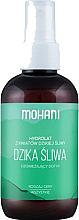 Düfte, Parfümerie und Kosmetik Blütenwasser für das Gesicht Wilde Pflaume - Mohani Natural Spa Plum Hydrolate