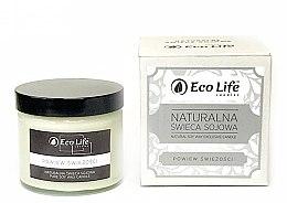 """Düfte, Parfümerie und Kosmetik Eco Life Candles - Natürliche Soja-Duftkerze im Glas """"Ein Schluck Frische"""""""