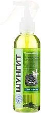Düfte, Parfümerie und Kosmetik Antioxidatives Haarspülung Spray mit Shungit - Fratti HB Shungite