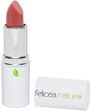 Düfte, Parfümerie und Kosmetik Matter Lippenstift - Felicea Natural Lipstick