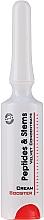 Düfte, Parfümerie und Kosmetik Glättender Anti-Falten Gesichtscreme-Booster mit Peptiden und Stammzellen - Frezyderm Peptides & Stems Cream Booster
