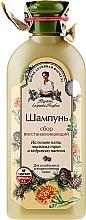 Düfte, Parfümerie und Kosmetik Regenerierendes Shampoo - Rezepte der Oma Agafja